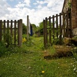 Random image: Garden View, Laundry on the Line