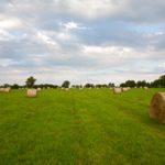 Random image: French Hay Bales #4