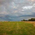Random image: French Hay Bales #5