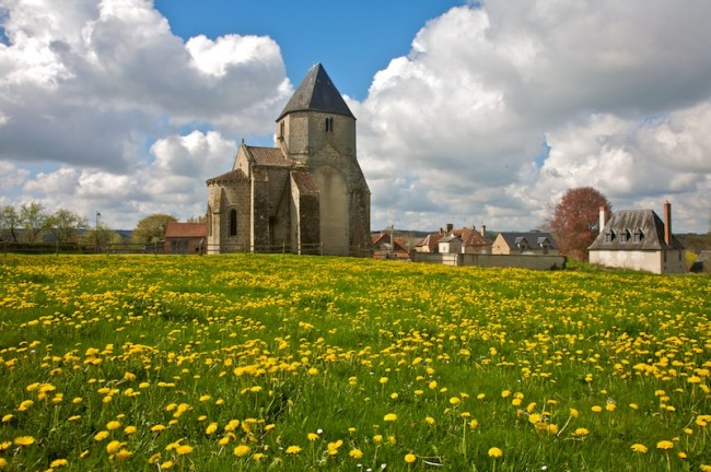 Dandelion Fields at Malval