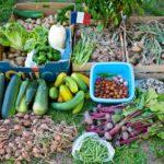 Random image: The Beautiful Harvest