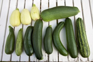 Holy Courgettes