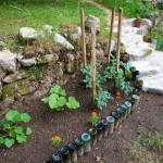 The New Bottle Garden