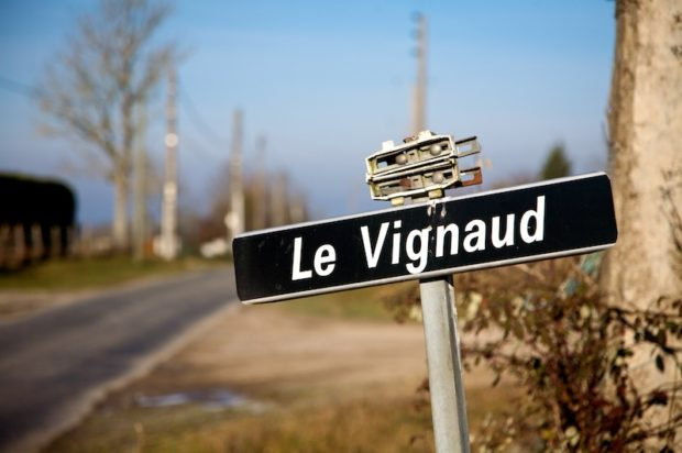 Le Vignaud, 2 November 2008