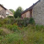 Random image: House and Yard