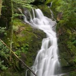 Random image: Mouse Creek Falls