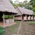 Jungle Accomodation