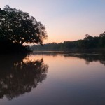 Random image: Sunset on the Tambopata