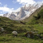 Random image: Nevado Huamantay