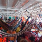 Jungle of Hammocks