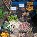 Random image: Mercado de Plantes Medicinales