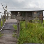 Random image: Southern Louisiana Real Estate