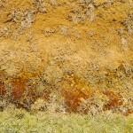 Random image: Thermophilic Bacteria