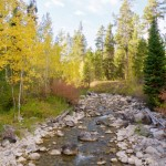 Random image: Rocky Mountain Landscape
