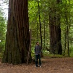 Random image: Jason and a Redwood