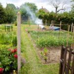Random image: Garden View, 16 May