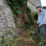 Random image: Cutting Ivy