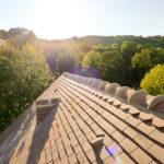Random image: Glorious Ridge-line View
