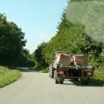 Random image: On the Road
