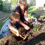 Random image: Konrad and Lena planting Lettuce