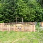 Random image: Garden #2 with new Fence