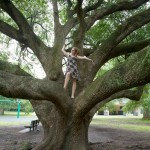 Random image: Lena in the Oak Tree