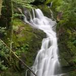 Random image: Mouse Creek Falls