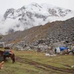 Random image: Horse and Salkantay