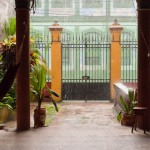 Random image: Amazon Rain Storm