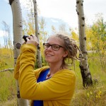 Random image: Lena and Aspens